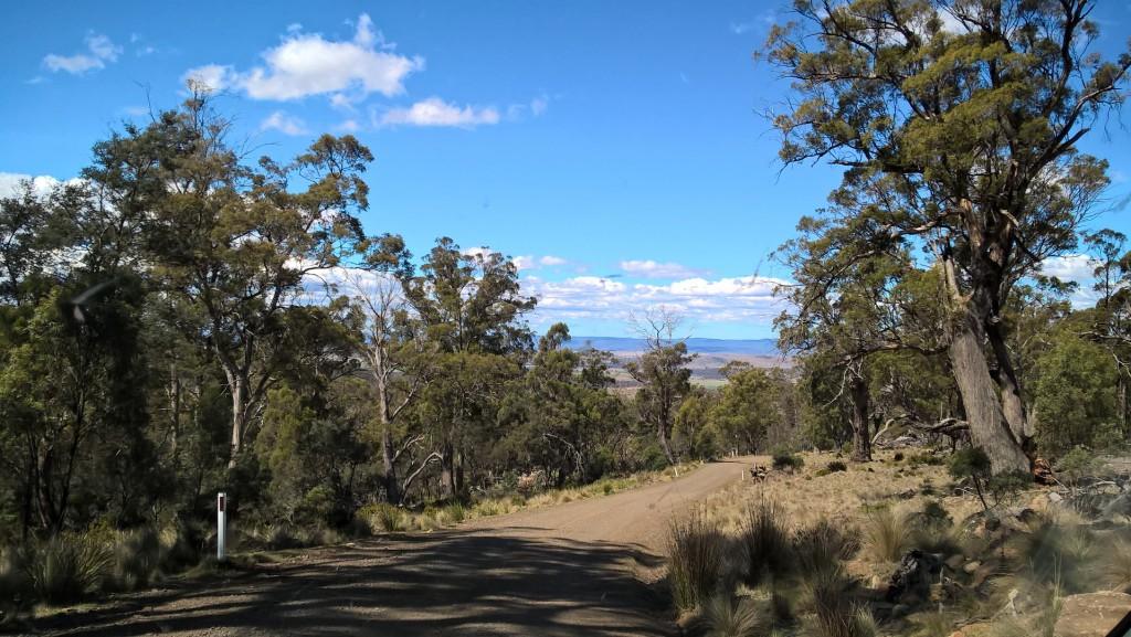 En hovedvej på Tasmanien